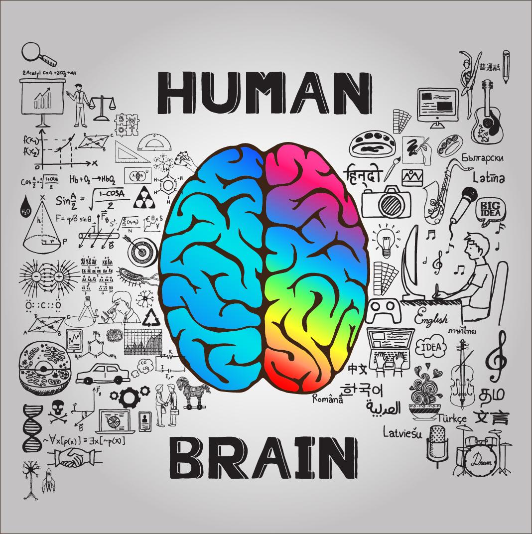 Left Brain versus Right Brain: For Content Marketers it's ...